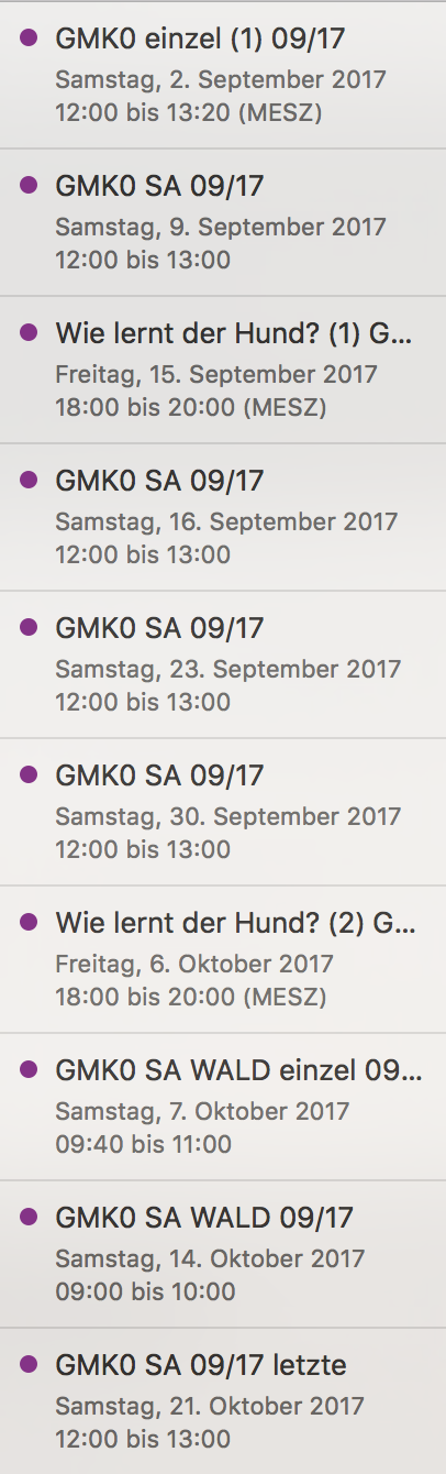 Alltagstraining Hundekurs Wien